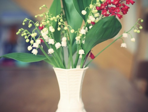 Muguet-1e-mai_effected1