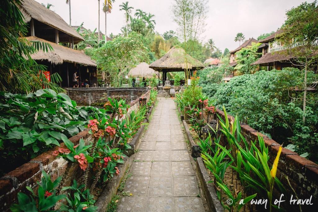 Bali Ubud village restaurant quoi faire idée touristique guesthouse  1
