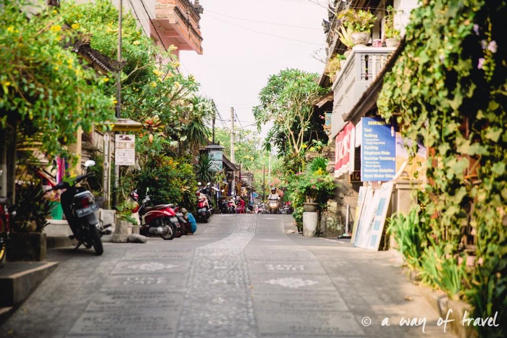 Bali Ubud village restaurant quoi faire idée touristique guesthouse  2