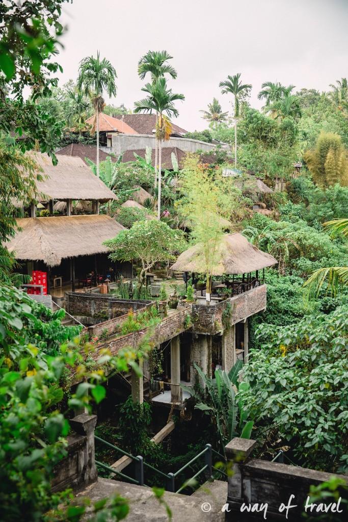 Bali Ubud village restaurant quoi faire idée touristique soup balinese 3