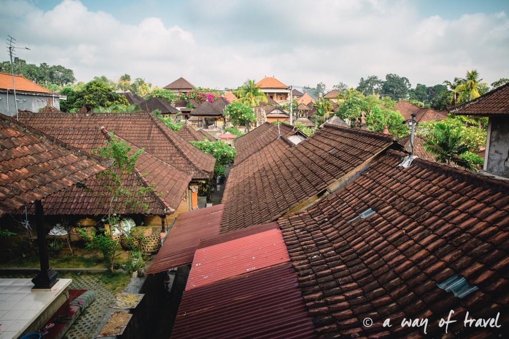Bali Ubud village restaurant quoi faire idée touristique soup balinese 4
