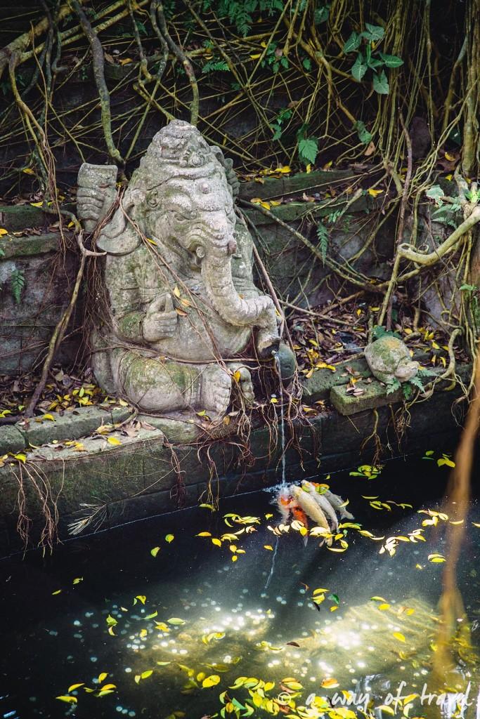 Ubud Bali foret singes monkey forest quoi faire idée touristique 12