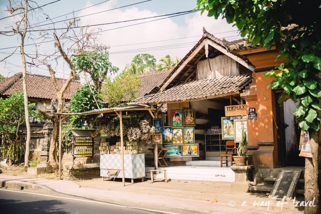 visit Ubud Indonesia Bali quoi faire rizière sana penestanan idée touristique 14