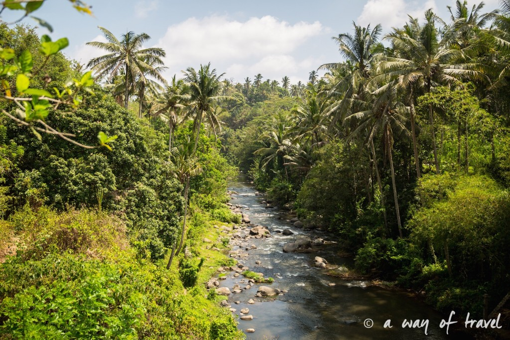 visit Ubud Indonesia Bali quoi faire rizière sana penestanan idée touristique river