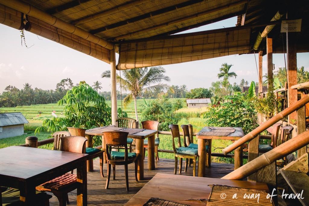 visit Ubud Indonesia Bali quoi faire rizière sari organic