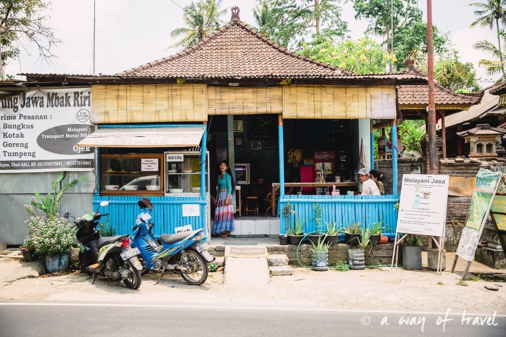 visit Ubud Indonesia Bali quoi faire rizière sayan warung