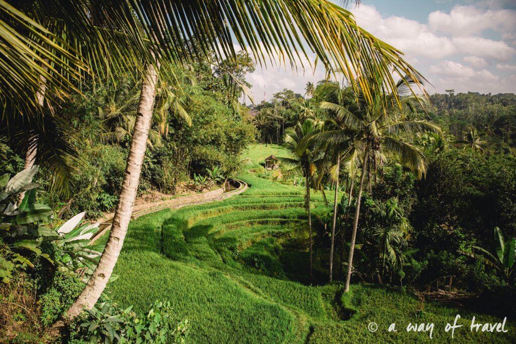 Indonesia Bali quoi faire visit Ubud Gunung Kawi