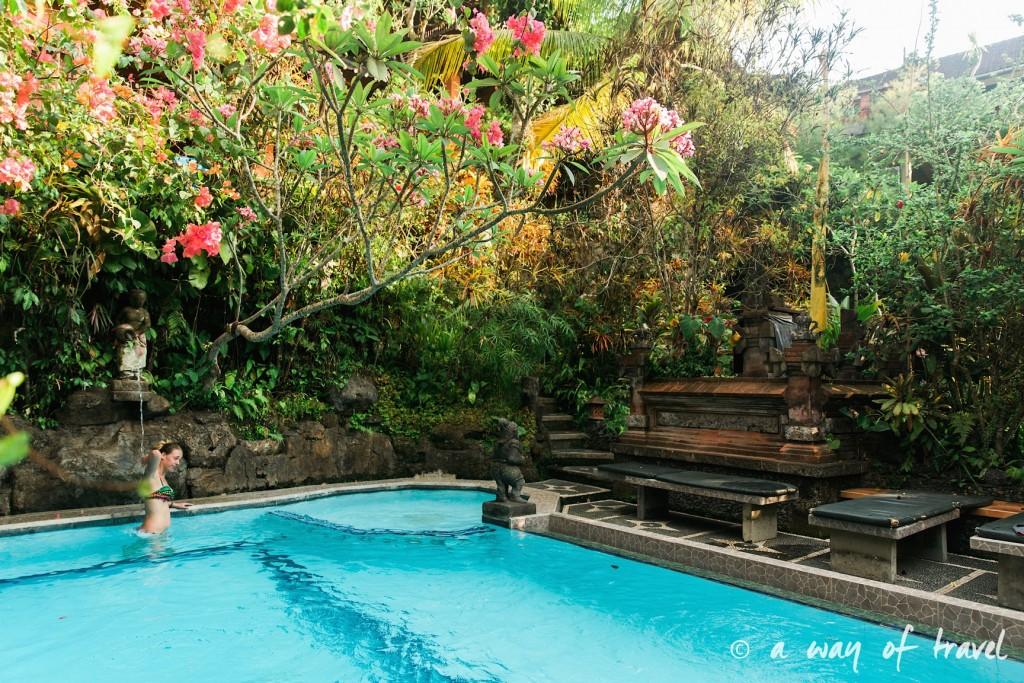 Indonesia Bali quoi faire visit Ubud piscine