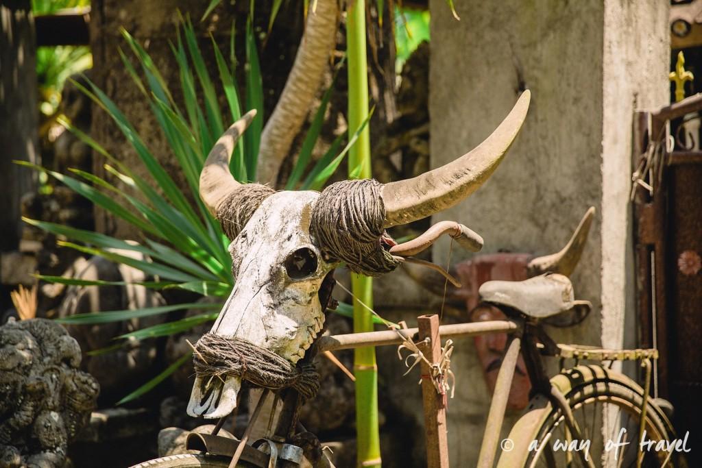 Indonesia Bali quoi faire visit Ubud velo crane