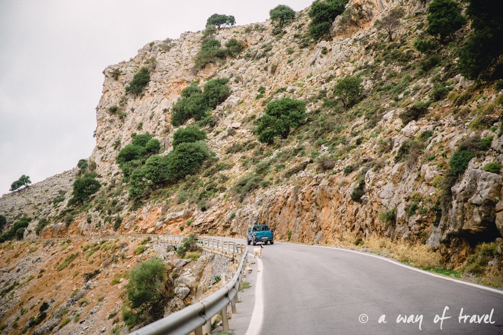 The Shepherd's Shelter Mount Ida Crete-94