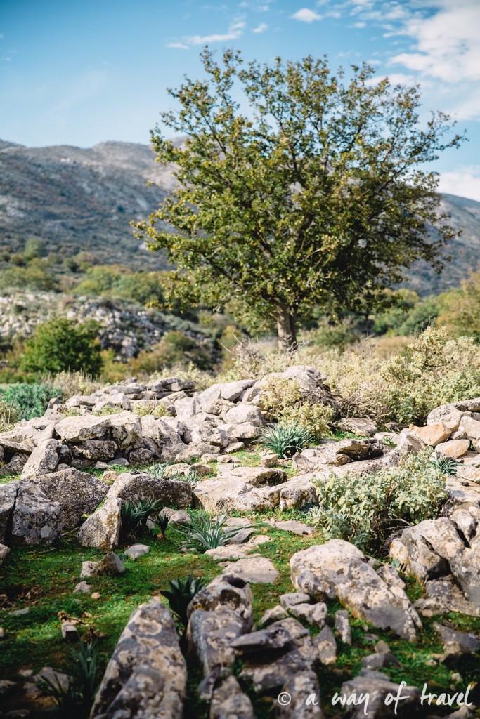 The Shepherd's Shelter Mount Ida paysage aggrotourisme Crete-100