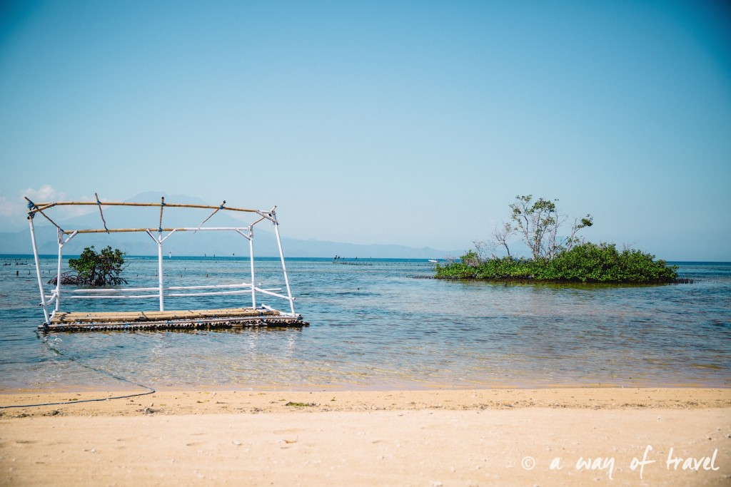 Visit Bali Indonesie Nasi Lembongan mangrove beach plage