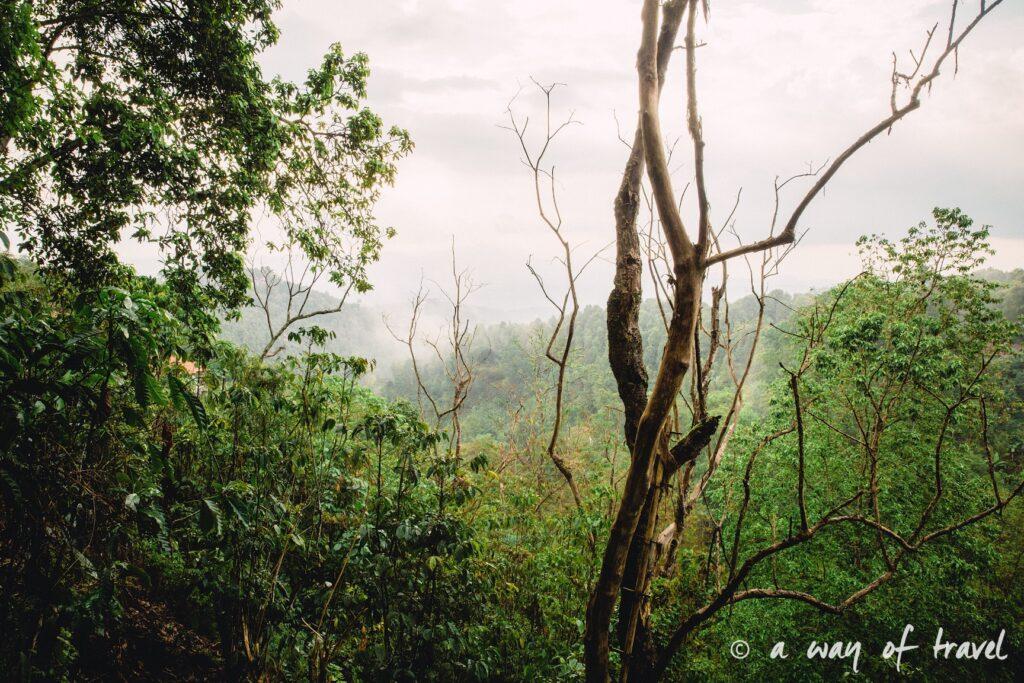 bali indonesie visiter munduk chute waterfall 14