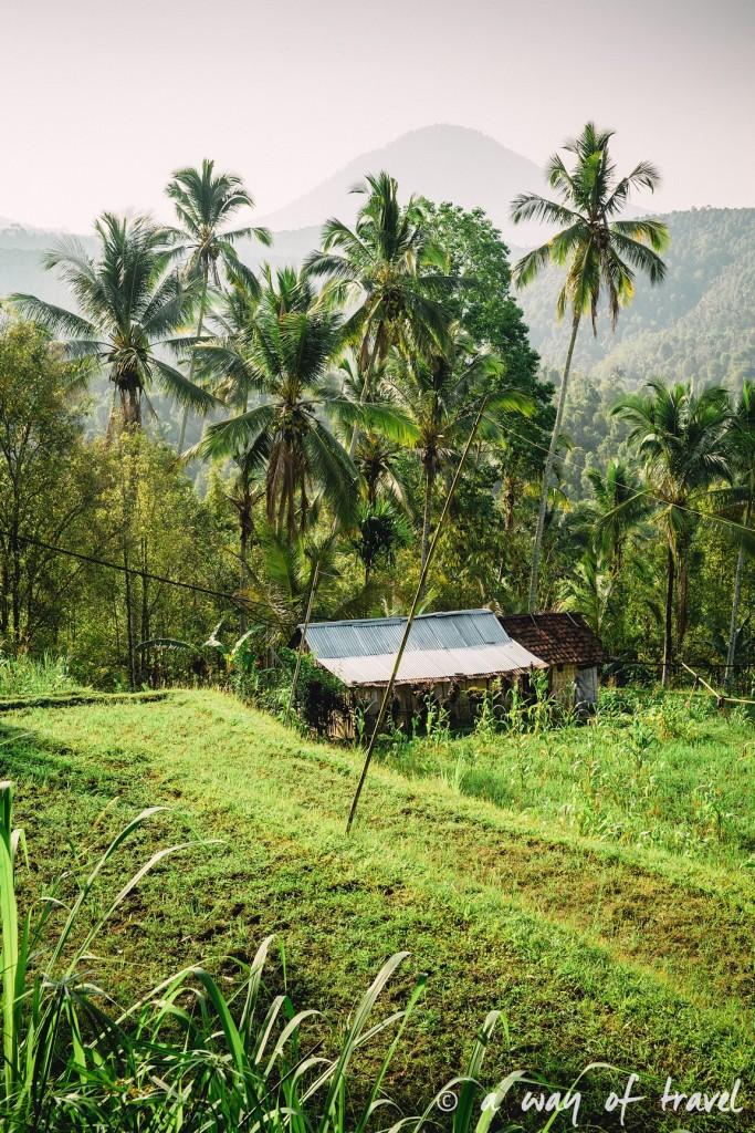 bali indonesie visiter munduk chute waterfall 15