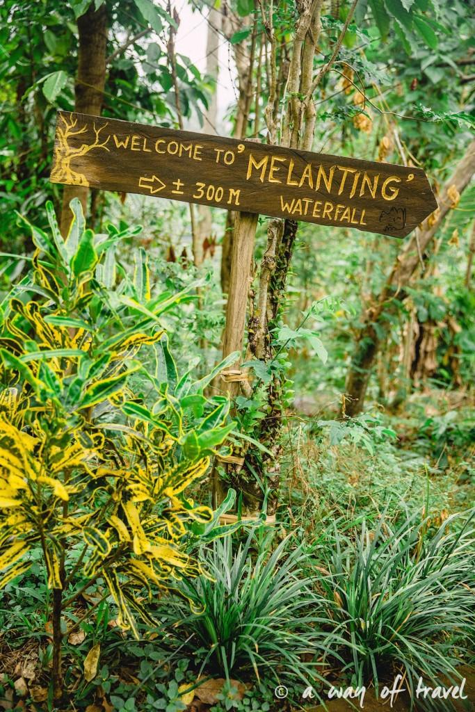 bali indonesie visiter munduk chute waterfall 17