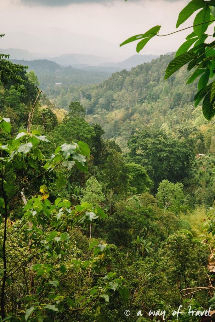 bali indonesie visiter munduk chute waterfall 18