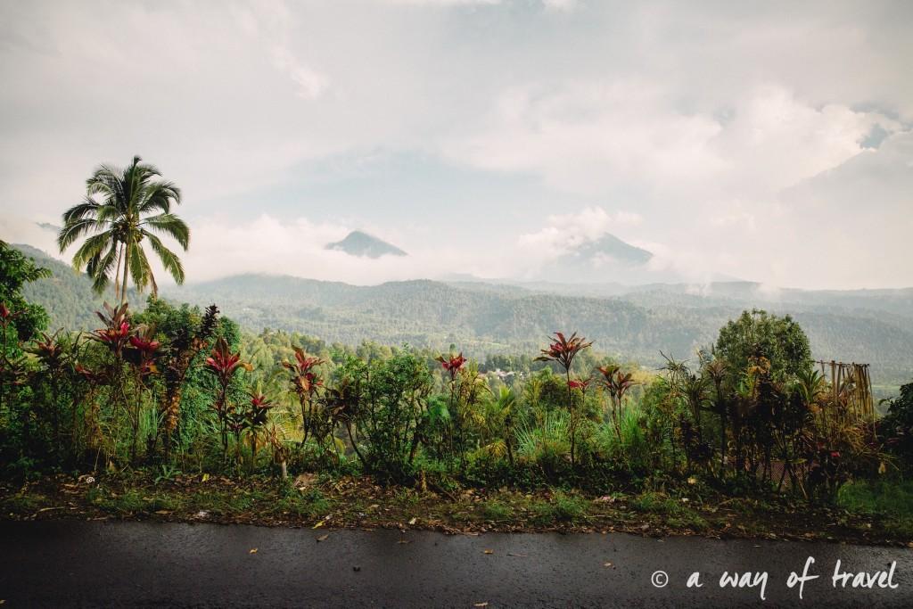 bali indonesie visiter munduk chute waterfall 19