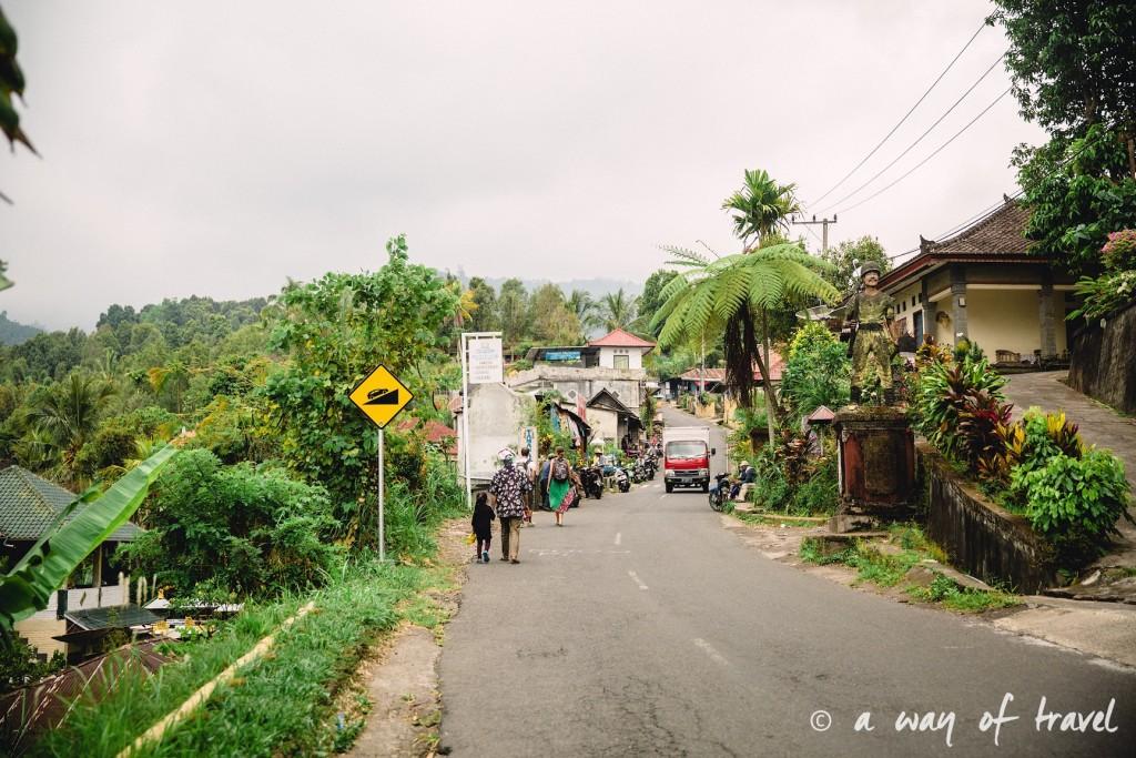 bali indonesie visiter munduk chute waterfall 3