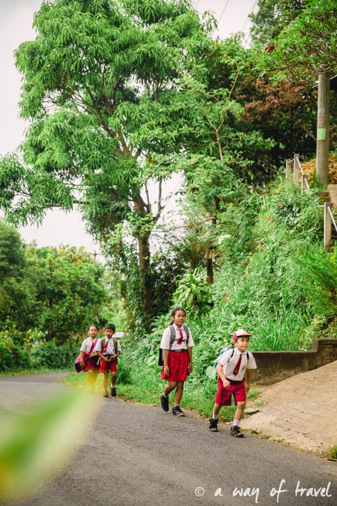 bali indonesie visiter munduk chute waterfall 9