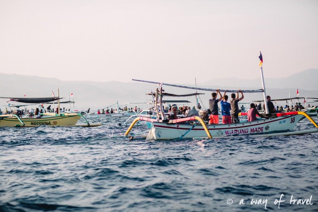 dauphins bateaux lovina permuteran bali visit 3