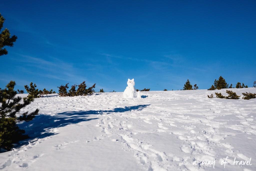 Plateau de beille Pyrénées randonnee raquette ski de fond hiver blog voyage 15