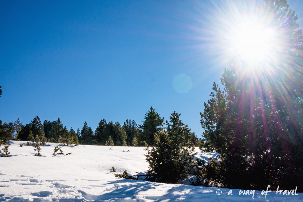 Plateau de beille Pyrénées randonnee raquette ski de fond hiver blog voyage 16