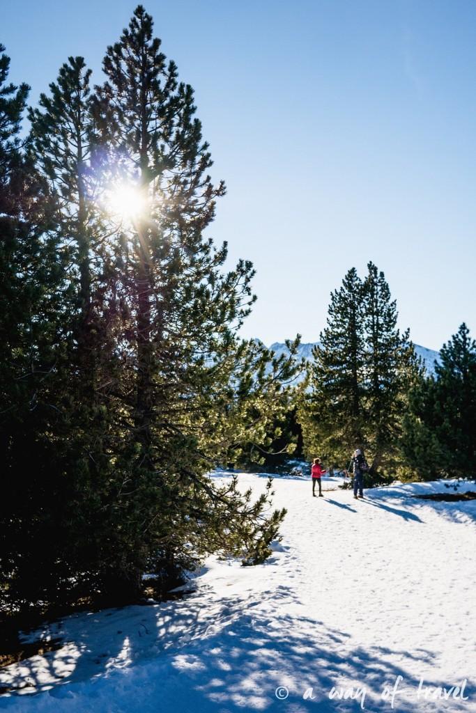 Plateau de beille Pyrénées randonnee raquette ski de fond hiver blog voyage 18