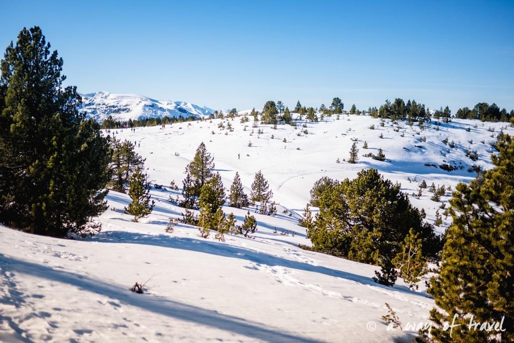 Plateau de beille Pyrénées randonnee raquette ski de fond hiver blog voyage 19