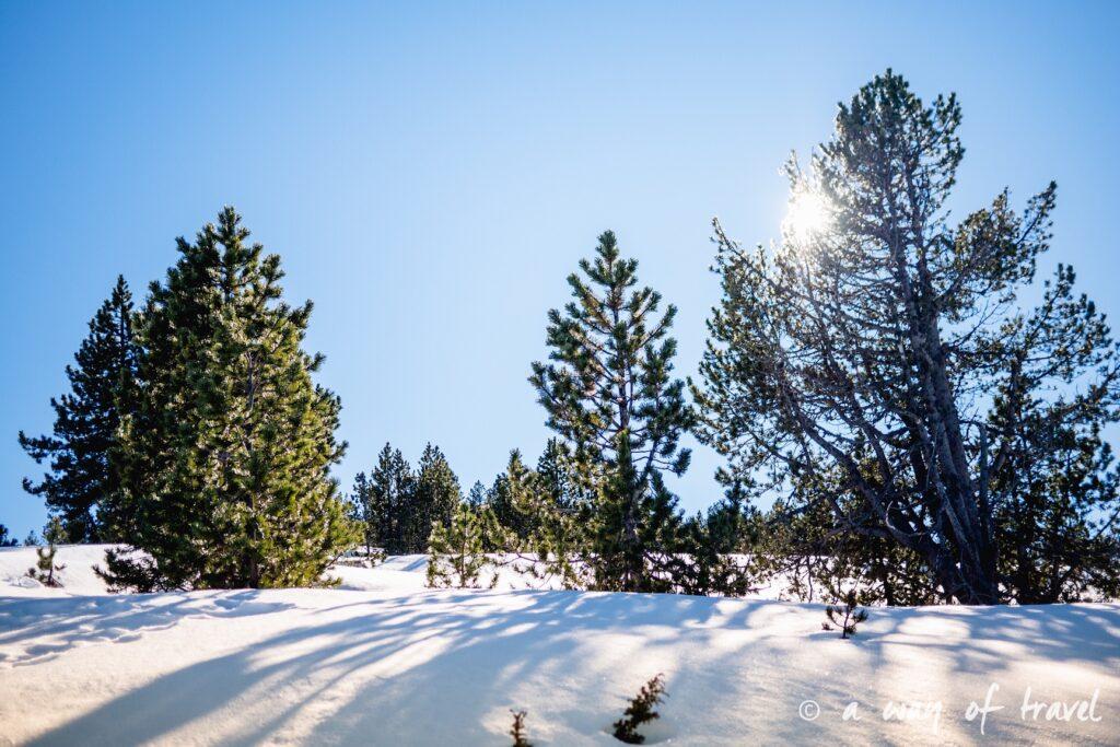 Plateau de beille Pyrénées randonnee raquette ski de fond hiver blog voyage 22