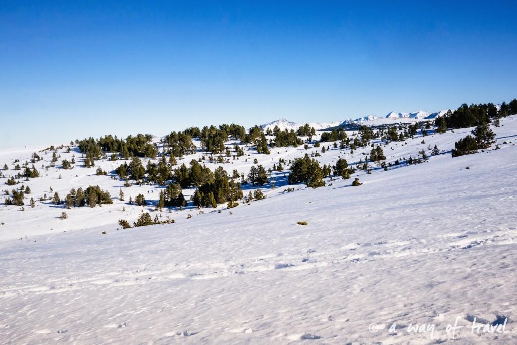 Plateau de beille Pyrénées randonnee raquette ski de fond hiver blog voyage 24