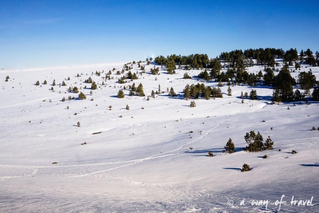 Plateau de beille Pyrénées randonnee raquette ski de fond hiver blog voyage 25