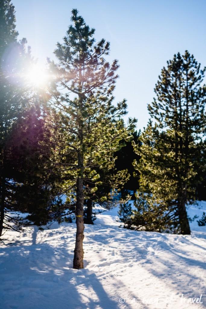 Plateau de beille Pyrénées randonnee raquette ski de fond hiver blog voyage 26