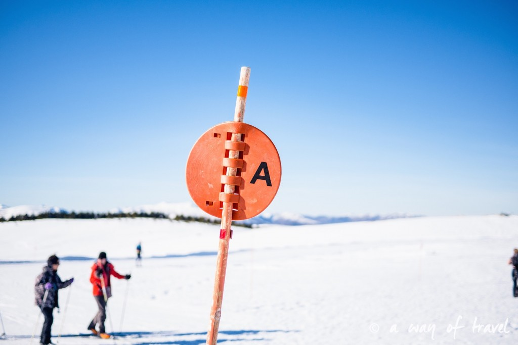 Plateau de beille Pyrénées randonnee raquette ski de fond hiver blog voyage 6