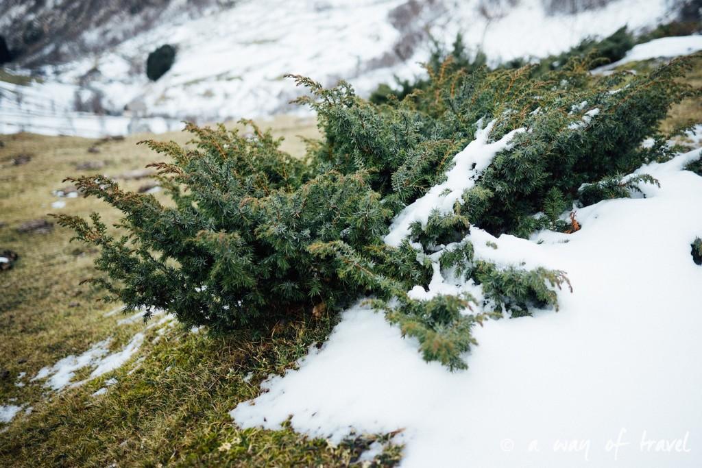 Randonnée neige raquette cirque garantie pyrenees montagne 1