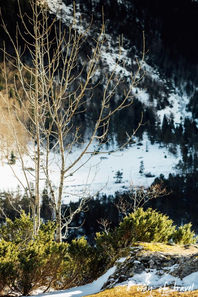 Randonnée neige raquette cirque garantie pyrenees montagne 13