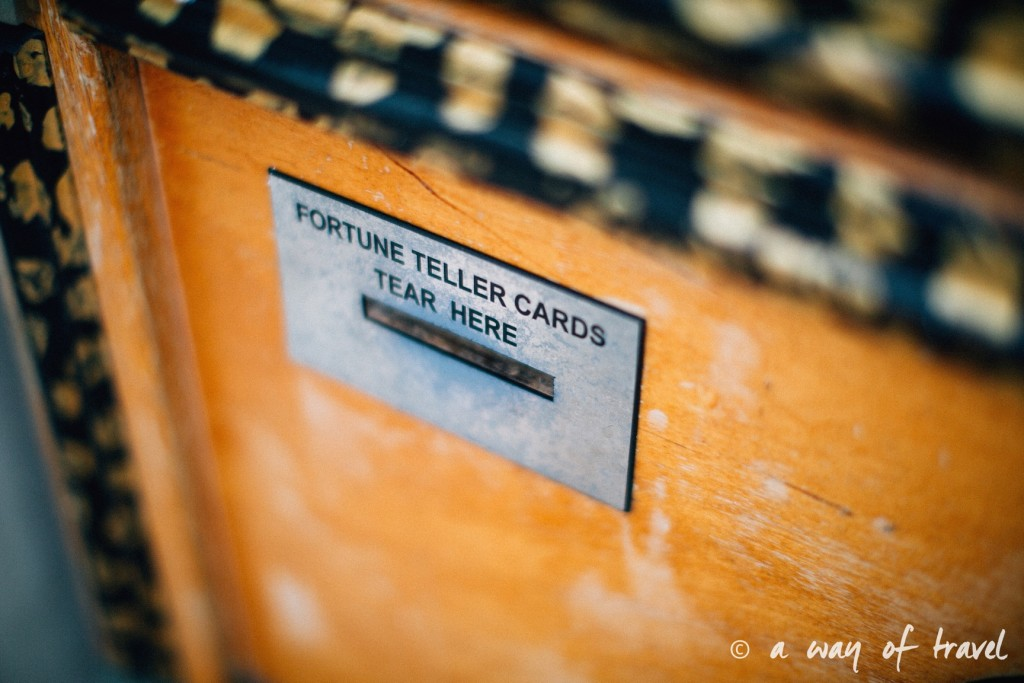 a way of travel blog voyage brighton angleterre visiter a voir 129 zoltar