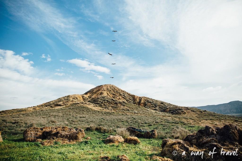 Bardenas Reales Parc naturel Espagne Road trip San Sebastian photos 3