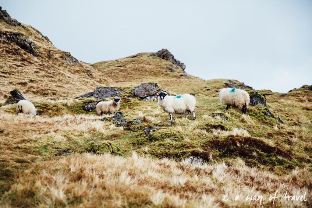 Ecosse visit scotland roadtrip isle skye blog 10