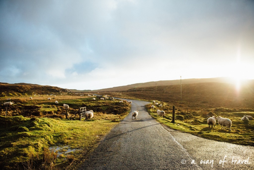 Ecosse visit scotland roadtrip isle skye blog 33