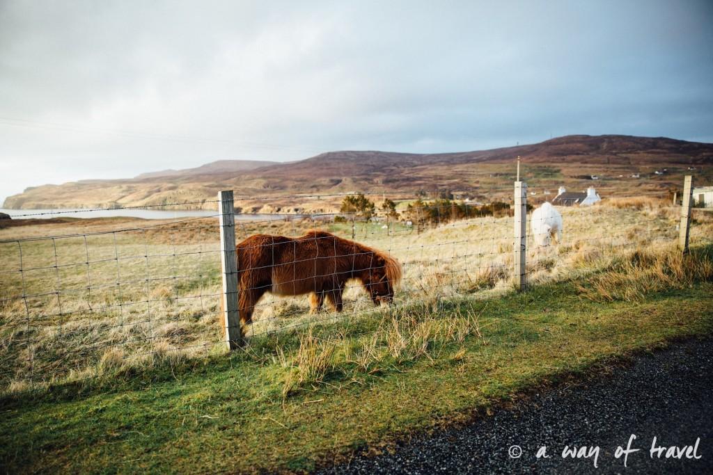 Ecosse visit scotland roadtrip isle skye blog 61