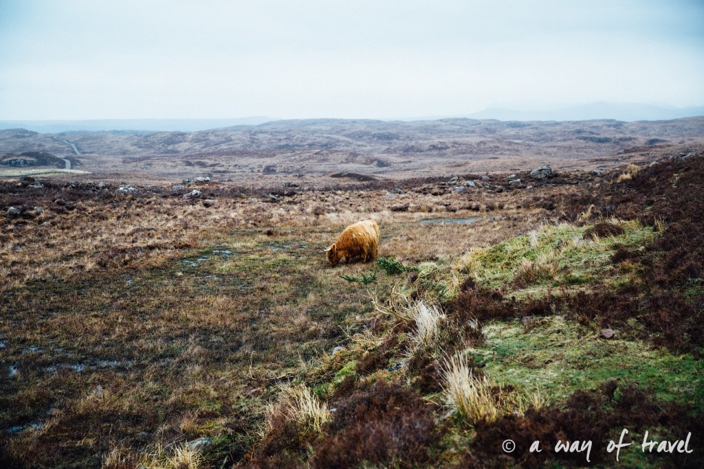 Road trip visit Ecosse scotland torridon applecross  9