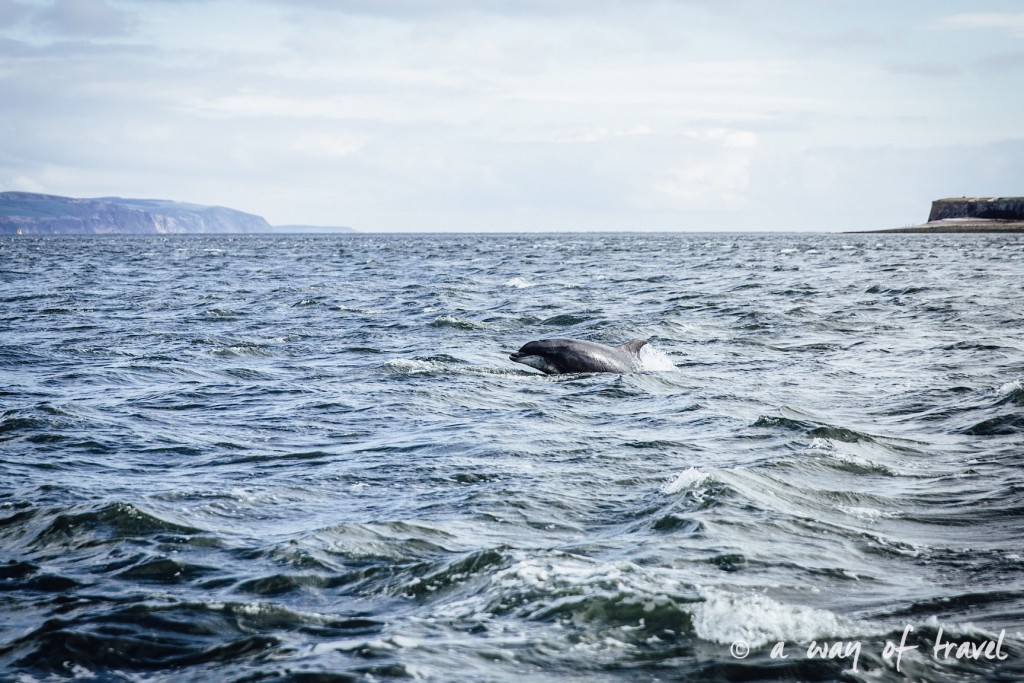 cromarty moray fith dauphin Visit Ecosse Scotland road trip blog voyage 3