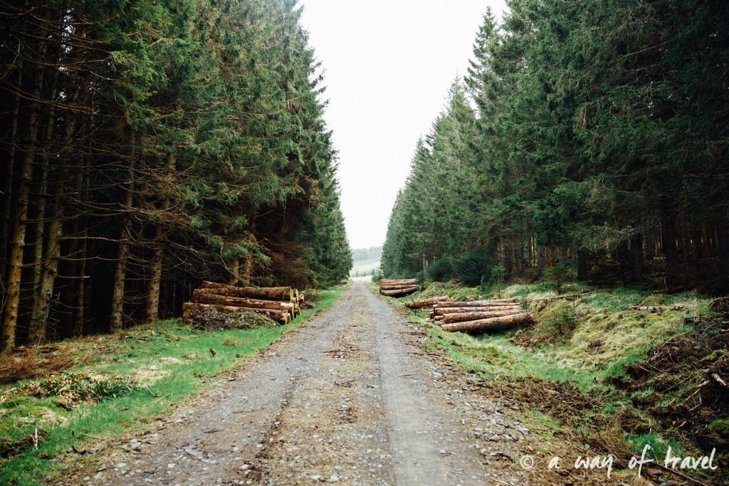 treehouse jake two years at sea Visit Ecosse Scotland road trip blog voyage 11