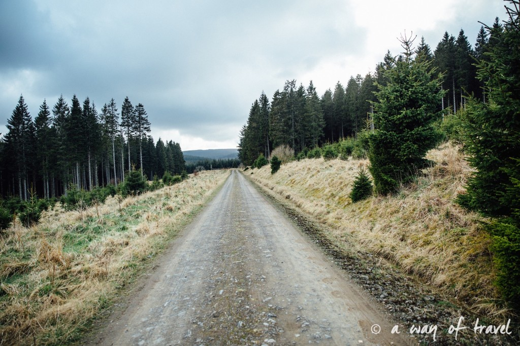 treehouse jake two years at sea Visit Ecosse Scotland road trip blog voyage 8