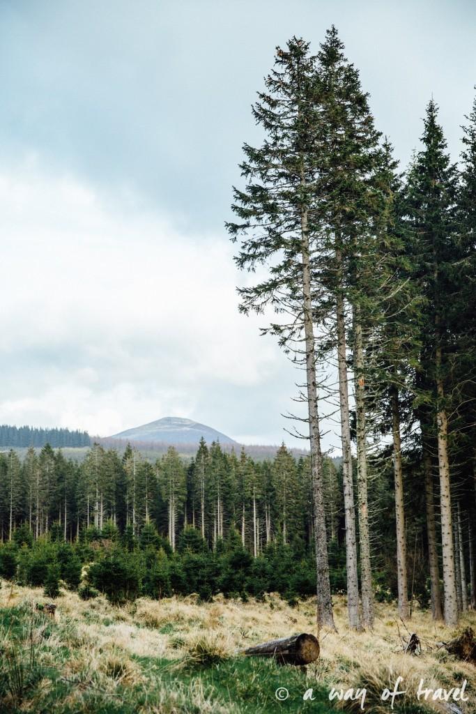 treehouse jake two years at sea Visit Ecosse Scotland road trip blog voyage 9