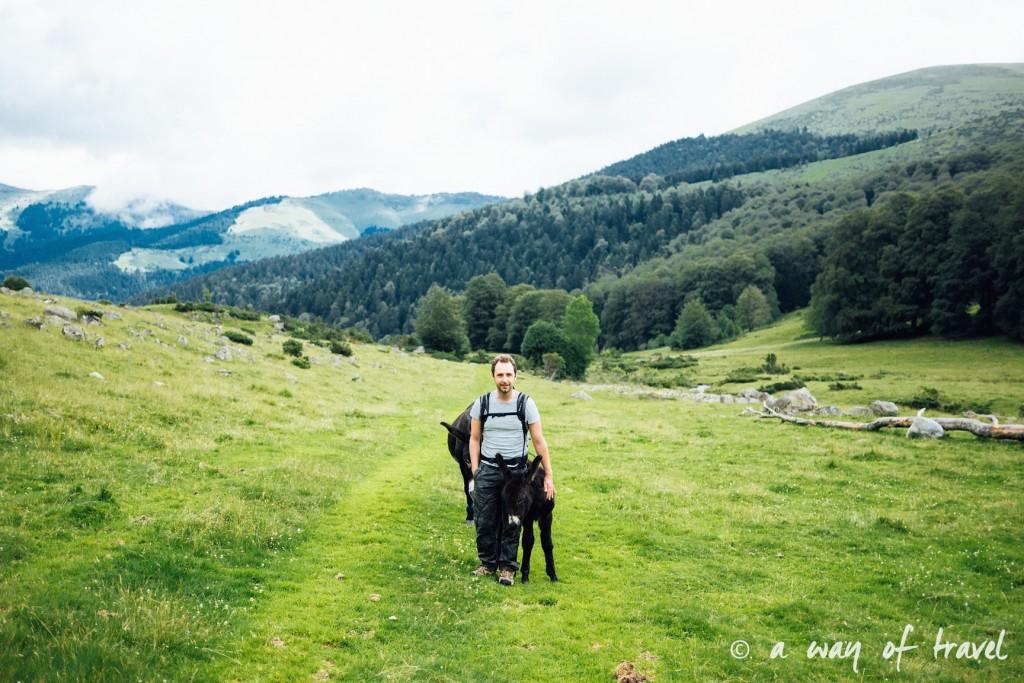 Randonnée pyrénéen lac arou Campan chevaux vaches 9