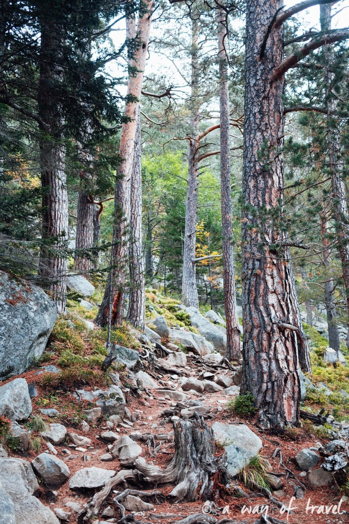 blog-randonnee-neouvielle-lac-pyrenees-4