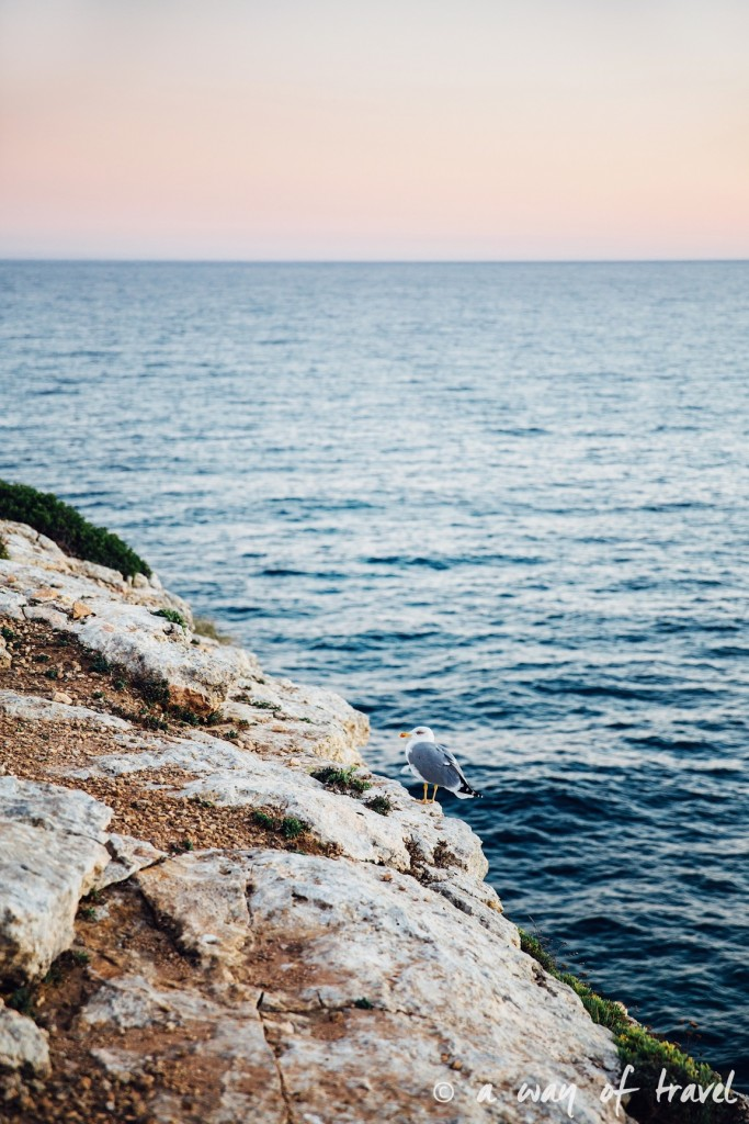 road-trip-portugal-algarve-visiter-3-benagil-west-coast