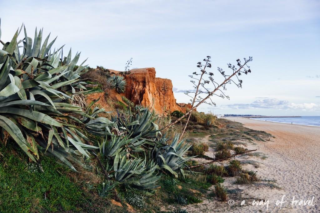 portugal-roadtrip-algarve-praia-1