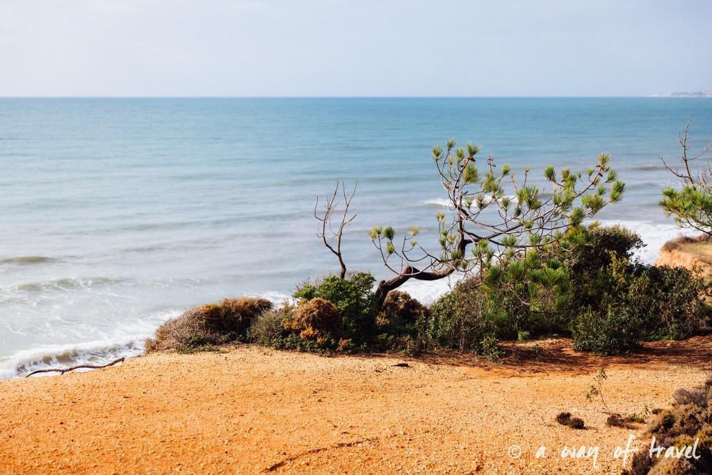 portugal-roadtrip-algarve-praia-falesias-albufeira-17